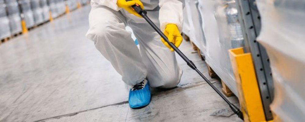Las mejores empresas de control de plagas en Madrid